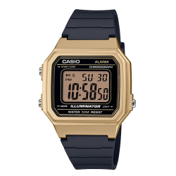 CASIO DIGITALNI W-217HM-9A