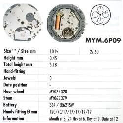 MIYOTA 6P09
