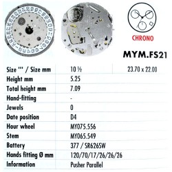 MIYOTA FS21